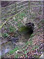 TM3763 : Gull Stream flowing under the A12 Saxmundham Bypass by Geographer
