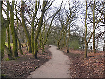SJ3682 : Eastham Woods Country Park by David Dixon