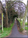 TM3763 : Footpath to Mill Road by Adrian Cable