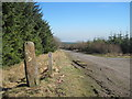 SN9302 : Marker post at junction in Tyle Forest by John Light