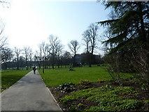SU4212 : Southampton's splendid parks (68) by Basher Eyre