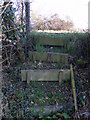 TM4171 : Footpath steps to the A12 London Road by Adrian Cable