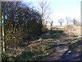 TM3869 : Footpath to Oak Tree Farm & A1120 Yoxford Road by Geographer
