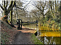 SD7400 : Bridgewater Canal, Worsley by David Dixon