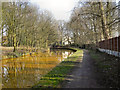 SD7400 : Bridgewater Canal, Approaching Worsley by David Dixon