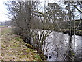 SD8591 : River Ure by David Brown