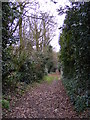 TM3968 : Loves Lane footpath to North Green by Adrian Cable