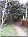 TM3969 : Footpath to the A1120 High Street by Adrian Cable