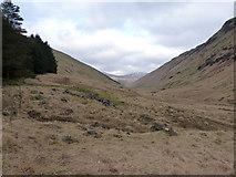 NN2318 : Up Glen Fyne towards Ben Oss by Richard Law