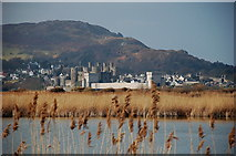 SH7877 : Conwy Castle from the RSPB reserve by Jim Barton