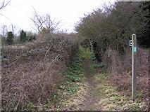 TM2649 : Collett's Walk footpath to B1079 Grunsburgh Road by Geographer