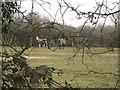 TL4979 : No longer an orchard by Hugh Venables