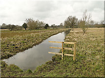 TG2105 : Cattle barrier on Marston Marshes near Norwich by Adrian S Pye