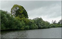 SO8453 : River Severn north of Diglis Weir, Worcester by Roger  Kidd