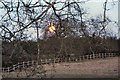 TL8063 : Super-moonrise at Little Saxham by Bob Jones