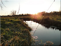 TG2105 : Drainage ditch on Marston marshes by Adrian S Pye