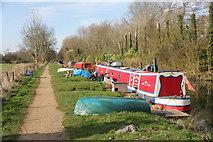 SU6269 : Moored along the bank by Bill Nicholls