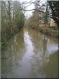 SP5206 : A branch of the River Cherwell by Marathon