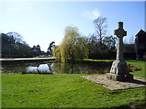 TQ2250 : War memorial and pond, Buckland by Stacey Harris