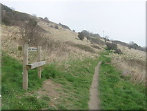 TR3140 : Bench on Western Heights by David Anstiss