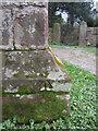 SJ3660 : Pivot bench mark on St Mary's tower by John S Turner