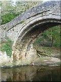 NT3366 : Maiden Bridge arch, Newbattle by kim traynor