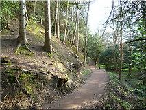 NT3366 : Riverside path, Newbattle Abbey grounds by kim traynor