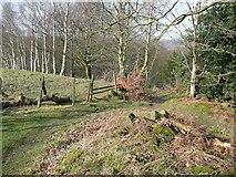 SE1839 : Path junction, Dawson Wood, Idle by Humphrey Bolton