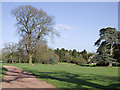 SO7699 : Driveway and grounds of Badger Hall, Shropshire by Roger  Kidd