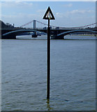 TQ2977 : A marker post in the Thames by Thomas Nugent