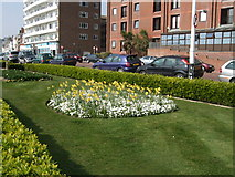 TQ7407 : Spring flowers on Bexhill Seafront by Paul Gillett