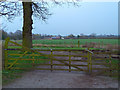 SJ7883 : Gate to Higher House Farm, Ashley. Cheshire by Anthony O'Neil