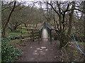 SD7211 : footbridge. by Philip Platt