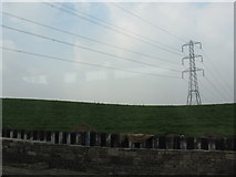 SD8611 : Pylon off the A58 by Peter Whatley