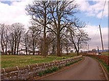 NS4566 : Blackstoun Farm by wfmillar