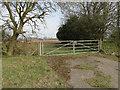 TG2030 : Metal field gate alongside the A140 near Banningham by Adrian S Pye
