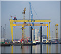J3575 : The 'Sea Jack' at Belfast by Rossographer