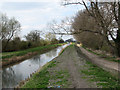 TL5365 : Swaffham Bulbeck Lode and new paths by John Sutton