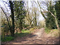TM3958 : Guilding's Lane Bridleway to Church Common by Geographer