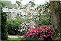 SW9741 : Caehays Castle through the trees by Stuart Logan
