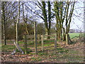 TM3761 : Bridleway to Deadman's Lane & St.Mary's Church by Adrian Cable