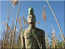 NT6578 : Coastal East Lothian : Man With Fish On His Head, Seafield Pond, Belhaven by Richard West