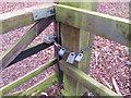 SU7690 : Locked gate, five different keys can open it by David Hawgood