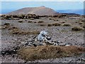 S2910 : Summit Cairn by kevin higgins