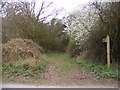 TM3757 : Restricted Byway over Blaxhall Common to the B1069 by Adrian Cable