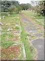 TQ1404 : A guided tour of Broadwater & Worthing Cemetery (80) by Basher Eyre