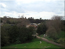TQ1876 : View of the rear of the peacock enclosures from the Xstrata Treetop Walkway by Robert Lamb
