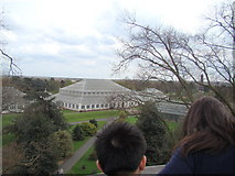 TQ1876 : View of the Glasshouse Walkway from the Xstrata Treetop Walkway by Robert Lamb