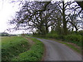TM3167 : Old Rectory Road, Badingham by Adrian Cable