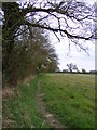 TM3167 : Footpath to Gortons Cottages & the A1120 High Road by Adrian Cable